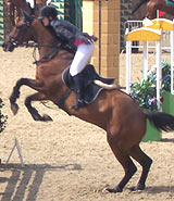 horse show jumping at Hickstead