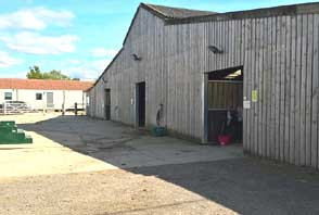 Rein and Shine livery yard barn stables